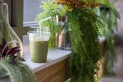 Lce Macha milk green tea in cafe. Lce Macha milk green tea in plastic glass with fresh green plant decoration on table for relax in cafe. Natural interior at Stock Photos