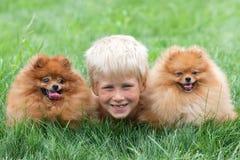 Lächelnder Junge mit zwei Hunden Stockfoto