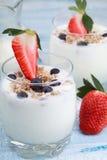 Läcker och sund yoghurt med granola eller mysli med muttrar, Royaltyfri Fotografi