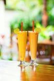 Läckra nya fruktsafter på en tropisk semesterort Arkivbild