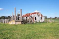 Ld农村农厂棚子和生活储蓄装货舷梯在一个农村设置在下午太阳末期 库存图片