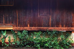 0ld drewniana ściana Fotografia Royalty Free