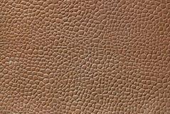 lädertextur Arkivbild