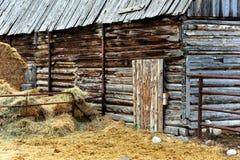 Åldras ladugården i Montana Royaltyfri Bild