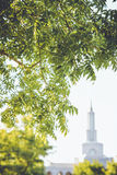 LDS Temple in Background Royalty Free Stock Photo