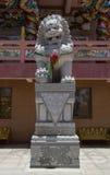 Leão chinês Fotografia de Stock Royalty Free