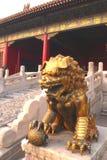 Leão chinês dourado Foto de Stock