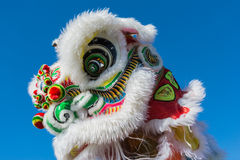 Leão chinês durante Dragon Parede dourado. Fotos de Stock Royalty Free