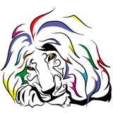 Leão colorido imagem de stock royalty free