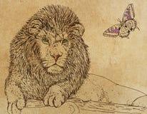 Leão com borboleta, Foto de Stock Royalty Free