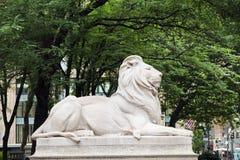 Leão da biblioteca pública de New York imagem de stock