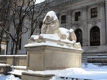 Leão da biblioteca pública de New York no inverno Imagem de Stock