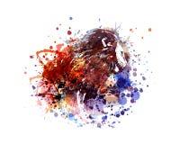 Leão da ilustração de cor do vetor Foto de Stock Royalty Free