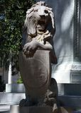 Leão de Oglethorpe Fotos de Stock Royalty Free