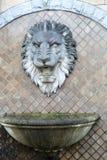Leão de pedra no Foto de Stock Royalty Free