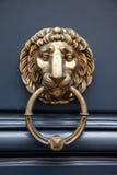 Leão do puxador da porta Fotos de Stock