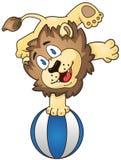 Leão dos desenhos animados na bola de praia Imagem de Stock