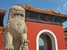 Leão e porta de pedra Imagem de Stock
