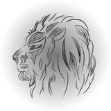 Leão em um fundo branco ilustração stock