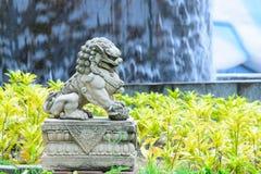 Leão imperial chinês, pedra do leão do guardião, estilo chinês no qui Imagem de Stock Royalty Free