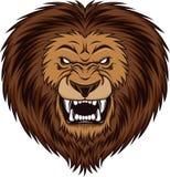 Leão irritado Fotografia de Stock Royalty Free
