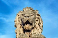 Leão na ponte de corrente de Budapest fotos de stock royalty free