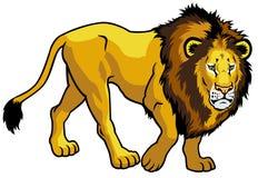 Leão no fundo branco Fotos de Stock Royalty Free