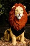 Leão no lego no jardim zoológico de Planckendael imagens de stock
