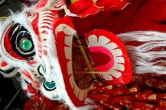 Leão que dança o dragão chinês Fotos de Stock