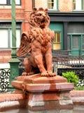 Leão - voado - rosnadura Fotografia de Stock