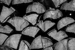 Leña apilada de la picea en el bosque - monocromo Imagen de archivo libre de regalías