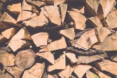 Leña apilada de la picea en el vintage del bosque Fotos de archivo libres de regalías