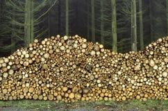 Leña apilada en la frontera de una madera fotos de archivo