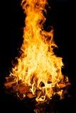 Leña ardiente Fotos de archivo libres de regalías