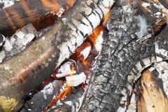 Leña ardiente en fuego Imagenes de archivo