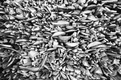 Leña como fondo Imagen de archivo