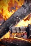 Leña del abedul en el fuego de la llama Fotos de archivo libres de regalías