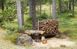 Leña empilada en el woodpile Imagen de archivo