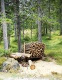 Leña empilada en el woodpile Fotos de archivo libres de regalías