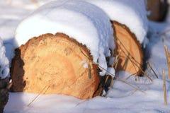 Leña empilada en nieve del invierno Foto de archivo