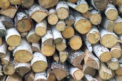 Leña en el woodpile Imagenes de archivo