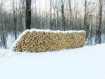Leña nevada Imagen de archivo libre de regalías