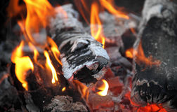 Leña que quema en foto macra de la acción del tiro de la llama Foto de archivo libre de regalías