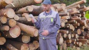 Leñador o carpintero del trabajador con un manojo grande de dinero cerca de una pila de registros, madera aserrada Concepto de ac metrajes