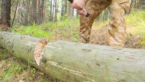 Leñador que corta el árbol con el hacha en el bosque metrajes