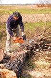Leñador que corta el árbol roto imagen de archivo libre de regalías