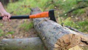 Leñador que taja la madera con un hacha metrajes