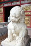 León chino fotos de archivo