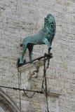 León, criatura mítica en el dei Priori de Palazzo en Perugia, Umbría imágenes de archivo libres de regalías