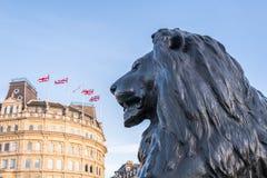 León cuadrado de Trafalgar Foto de archivo